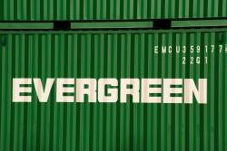 contenu evergreen
