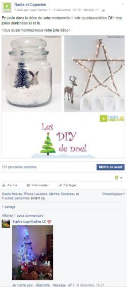 publication Facebook Radis et capucine